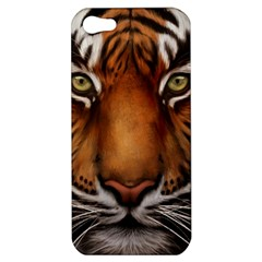 The Tiger Face Apple Iphone 5 Hardshell Case
