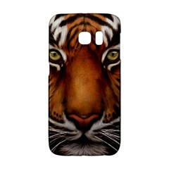 The Tiger Face Galaxy S6 Edge