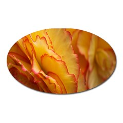 Flowers Leaves Leaf Floral Summer Oval Magnet