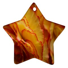 Flowers Leaves Leaf Floral Summer Star Ornament (two Sides)