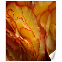 Flowers Leaves Leaf Floral Summer Canvas 8  X 10