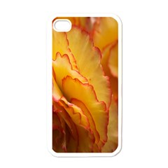 Flowers Leaves Leaf Floral Summer Apple Iphone 4 Case (white)