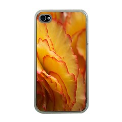 Flowers Leaves Leaf Floral Summer Apple Iphone 4 Case (clear)