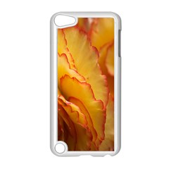 Flowers Leaves Leaf Floral Summer Apple Ipod Touch 5 Case (white)