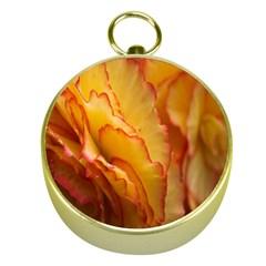 Flowers Leaves Leaf Floral Summer Gold Compasses