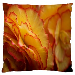 Flowers Leaves Leaf Floral Summer Large Flano Cushion Case (one Side)
