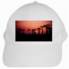 Baobabs Trees Silhouette Landscape White Cap