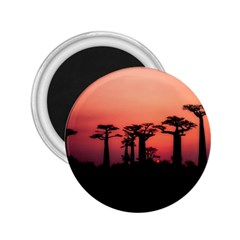 Baobabs Trees Silhouette Landscape 2 25  Magnets