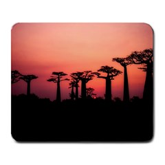 Baobabs Trees Silhouette Landscape Large Mousepads