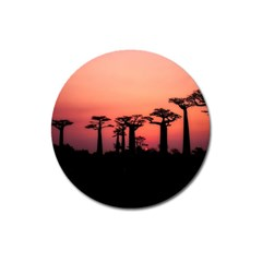 Baobabs Trees Silhouette Landscape Magnet 3  (round)