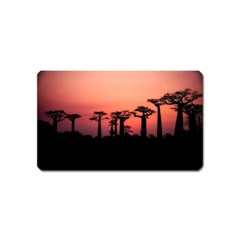 Baobabs Trees Silhouette Landscape Magnet (name Card)