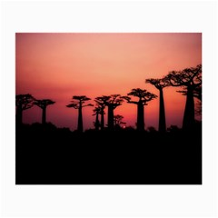 Baobabs Trees Silhouette Landscape Small Glasses Cloth (2 Side)
