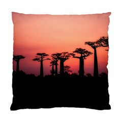 Baobabs Trees Silhouette Landscape Standard Cushion Case (one Side)