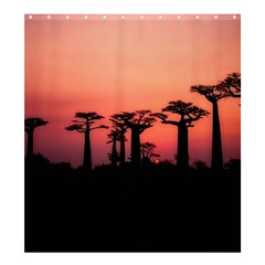 Baobabs Trees Silhouette Landscape Shower Curtain 66  X 72  (large)
