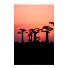 Baobabs Trees Silhouette Landscape Shower Curtain 48  X 72  (small)