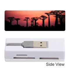 Baobabs Trees Silhouette Landscape Memory Card Reader (stick)