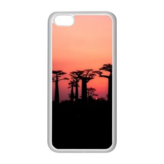 Baobabs Trees Silhouette Landscape Apple Iphone 5c Seamless Case (white)