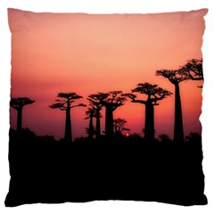 Baobabs Trees Silhouette Landscape Standard Flano Cushion Case (one Side)