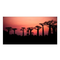 Baobabs Trees Silhouette Landscape Satin Shawl