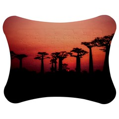 Baobabs Trees Silhouette Landscape Jigsaw Puzzle Photo Stand (bow)