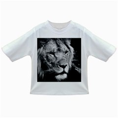 Africa Lion Male Closeup Macro Infant/toddler T Shirts
