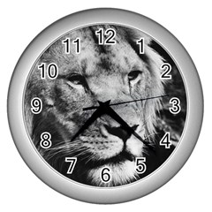 Africa Lion Male Closeup Macro Wall Clocks (silver)