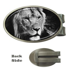 Africa Lion Male Closeup Macro Money Clips (oval)
