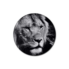 Africa Lion Male Closeup Macro Rubber Round Coaster (4 Pack)