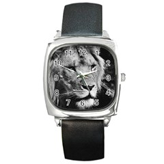 Africa Lion Male Closeup Macro Square Metal Watch