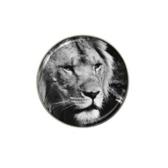 Africa Lion Male Closeup Macro Hat Clip Ball Marker (10 Pack)