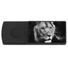 Africa Lion Male Closeup Macro Rectangular Usb Flash Drive