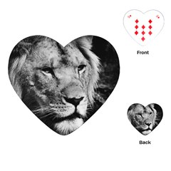 Africa Lion Male Closeup Macro Playing Cards (heart)