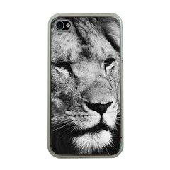 Africa Lion Male Closeup Macro Apple Iphone 4 Case (clear)