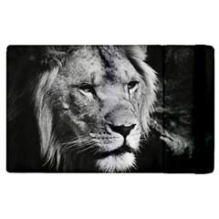Africa Lion Male Closeup Macro Apple Ipad 2 Flip Case