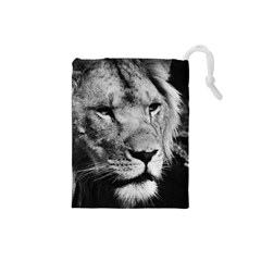 Africa Lion Male Closeup Macro Drawstring Pouches (small)