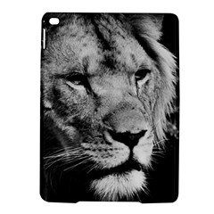 Africa Lion Male Closeup Macro Ipad Air 2 Hardshell Cases