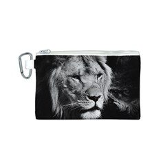 Africa Lion Male Closeup Macro Canvas Cosmetic Bag (s)