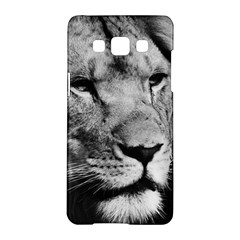 Africa Lion Male Closeup Macro Samsung Galaxy A5 Hardshell Case