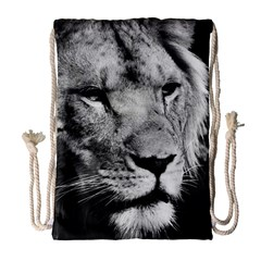 Africa Lion Male Closeup Macro Drawstring Bag (large)