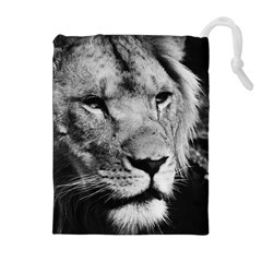 Africa Lion Male Closeup Macro Drawstring Pouches (extra Large)