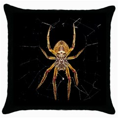 Insect Macro Spider Colombia Throw Pillow Case (black)