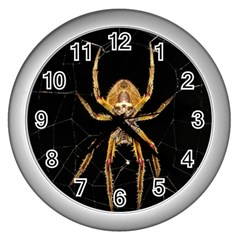 Insect Macro Spider Colombia Wall Clocks (silver)