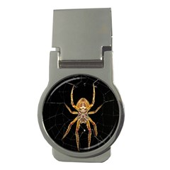 Insect Macro Spider Colombia Money Clips (round)