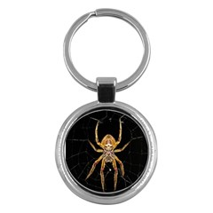 Insect Macro Spider Colombia Key Chains (round)