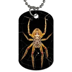 Insect Macro Spider Colombia Dog Tag (two Sides)