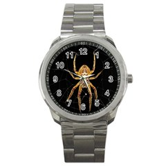 Insect Macro Spider Colombia Sport Metal Watch