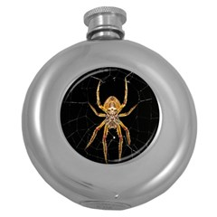 Insect Macro Spider Colombia Round Hip Flask (5 Oz)