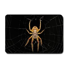 Insect Macro Spider Colombia Small Doormat