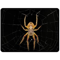 Insect Macro Spider Colombia Fleece Blanket (large)