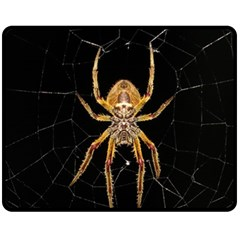 Insect Macro Spider Colombia Fleece Blanket (medium)